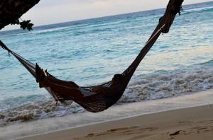 Seychelles Hammock