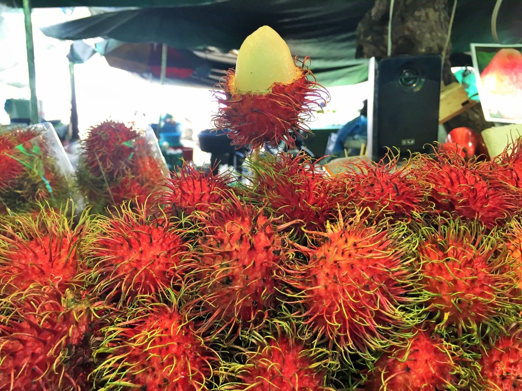 Tha Chang Market was jam packed with tropical fruits. We gorged on some Rambutans while there!