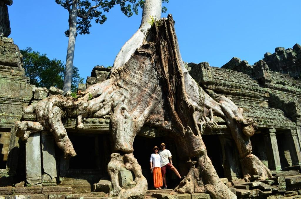 Massive trees overrun Preah Khan